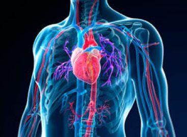 Nouveaux anticoagulants : un scandale sanitaire prévisible et annoncé