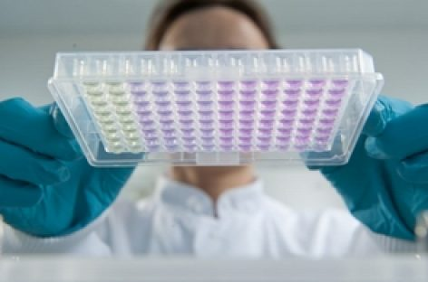 La Biotech mondiale confirme son envol
